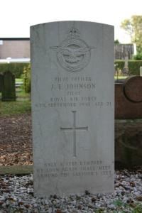 Johnson J E