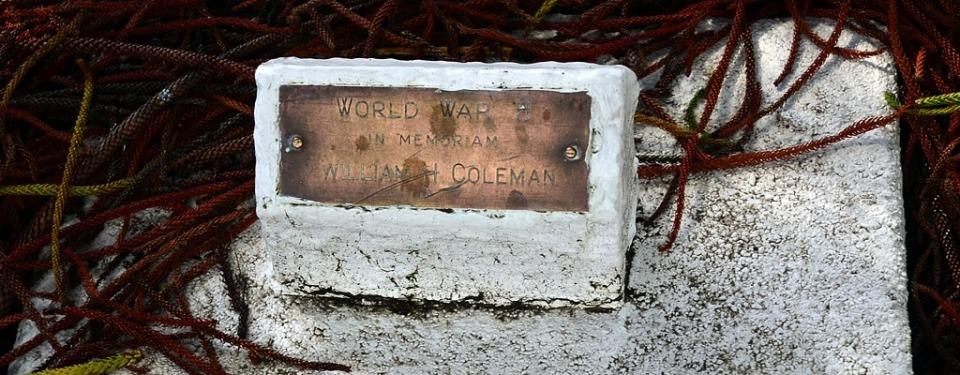 WHColeman-plaque[3]